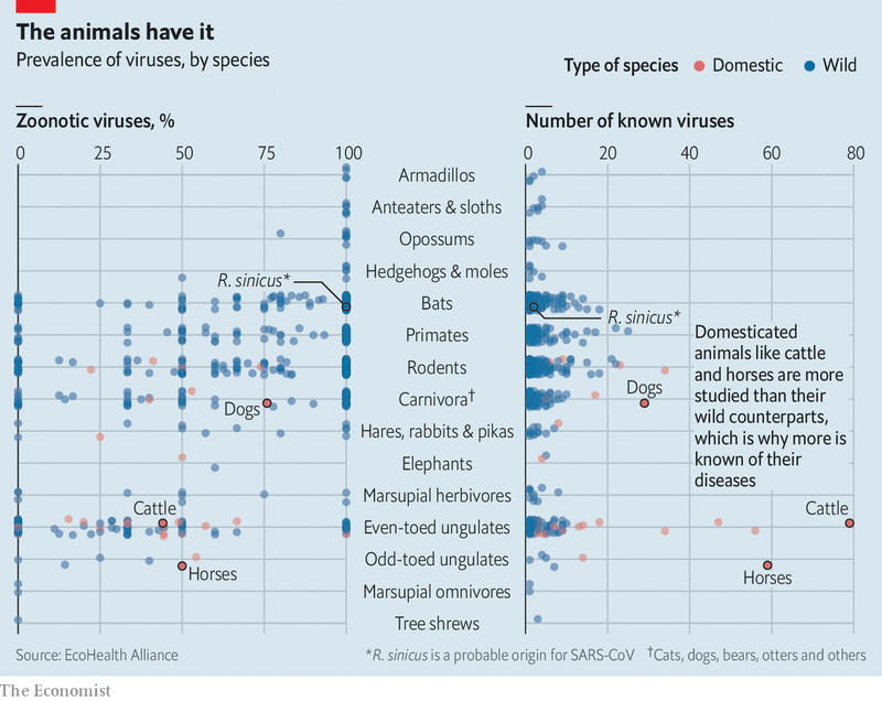 the animals have it_Economist.png